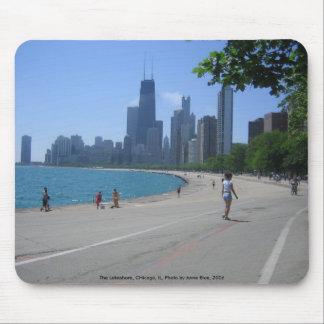 A orillas del lago, Chicago, IL Alfombrillas De Ratones