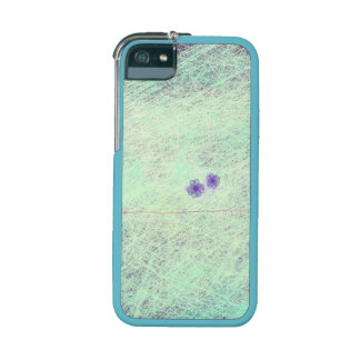 A pair cover for iPhone 5/5S
