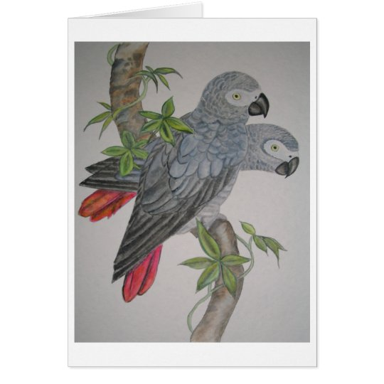 A Pair of African Grey Parrots watercolor painting Card