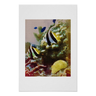 A Pair of Angel Fish Poster