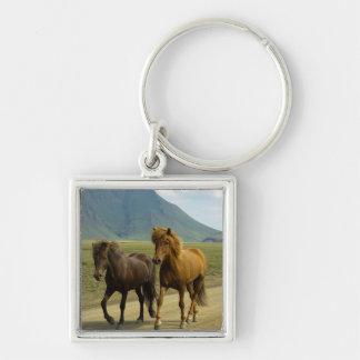 A Pair of Brown Icelandic Ponies Keychains