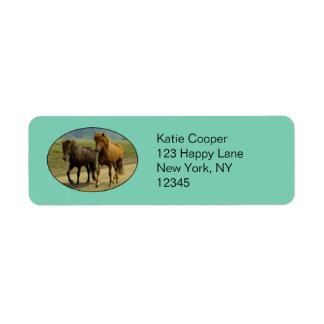 A Pair of Brown Icelandic Ponies Label