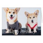 A Pair Of Corgis Sitting On A Bench Card
