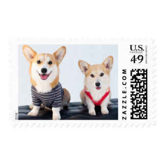 A Pair Of Corgis Sitting On A Bench Postage