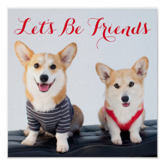 A Pair Of Corgis Sitting On A Bench Poster