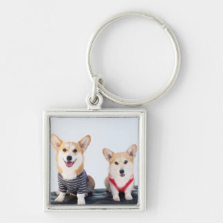 A Pair Of Corgis Sitting On A Bench Silver-Colored Square Keychain