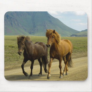A Pair of fancy Brown Icelandic Ponies Mouse Pad