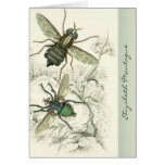 A Pair of Flies Personalized Note Cards