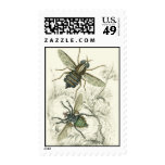A Pair of Flies Postage Stamps