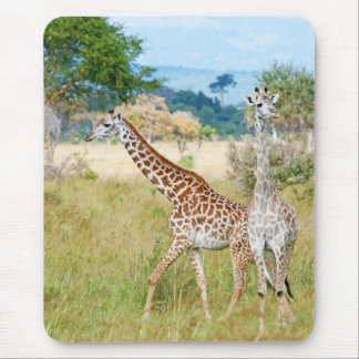 A Pair of Giraffes in the Mikumi National Park Mouse Pad