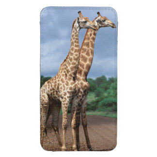 A Pair Of Giraffes On Road, Kruger National Galaxy S4 Pouch