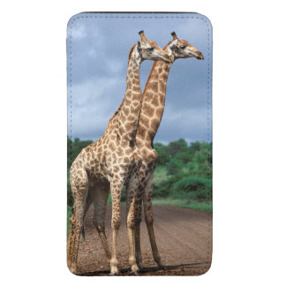 A Pair Of Giraffes On Road, Kruger National Galaxy S5 Pouch