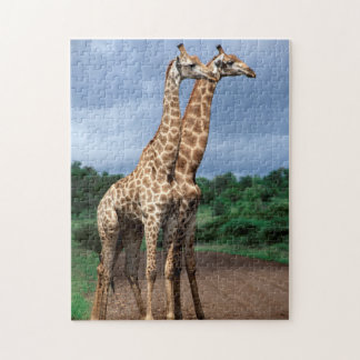 A Pair Of Giraffes On Road, Kruger National Jigsaw Puzzle