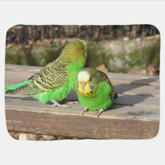 A Pair of Green Budgies on a wooden bench Baby Blanket
