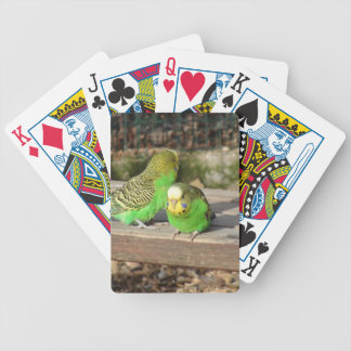 A Pair of Green Budgies on a wooden bench Bicycle Playing Cards