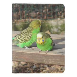 A Pair of Green Budgies on a wooden bench Extra Large Moleskine Notebook