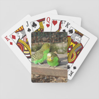 A Pair of Green Budgies on a wooden bench Playing Cards
