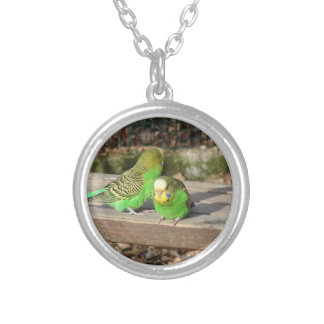 A Pair of Green Budgies on a wooden bench Silver Plated Necklace
