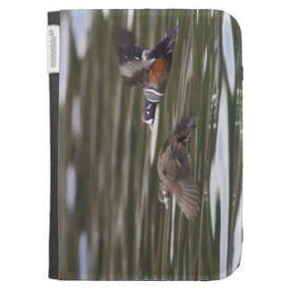A pair of harlequin ducks take flight kindle case