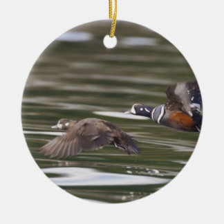 A pair of harlequin ducks take flight christmas ornaments