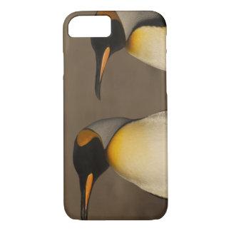 A pair of King Penguins (Aptenodytes p. iPhone 8/7 Case