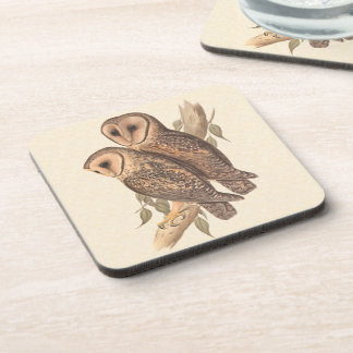 A Pair of Masked Barn Owls on a branch (painting). Drink Coaster