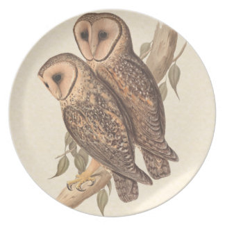 A Pair of Masked Barn Owls on a branch (painting). Melamine Plate