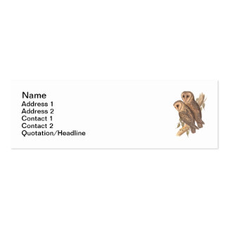 A Pair of Masked Barn Owls on a branch (painting). Mini Business Card