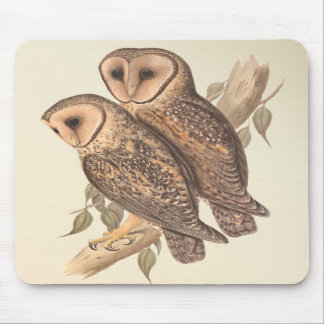 A Pair of Masked Barn Owls on a branch (painting). Mouse Pads