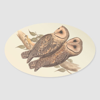 A Pair of Masked Barn Owls on a branch (painting). Oval Sticker