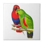 A Pair of Parrots Love Birds Tiles