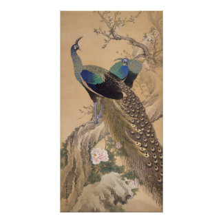 A Pair of Peacocks in Spring by Imao Keinen Poster