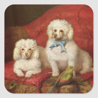 A Pair of Poodles Square Sticker
