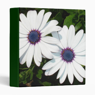 A Pair of Pristine White African Daisies 3 Ring Binder
