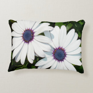 A Pair of Pristine White African Daisies Decorative Pillow
