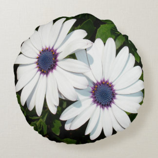 A Pair of Pristine White African Daisies Round Pillow