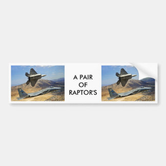 A PAIR OF RAPTOR S BUMPER STICKERS