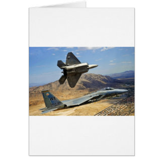 A PAIR OF RAPTOR'S CARD