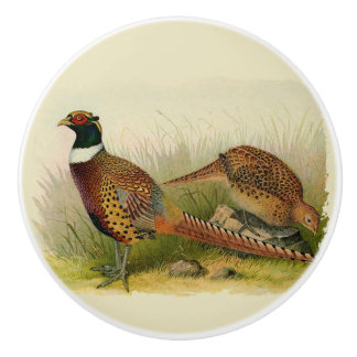 A pair of Ring necked pheasants in a grassy field Ceramic Knob