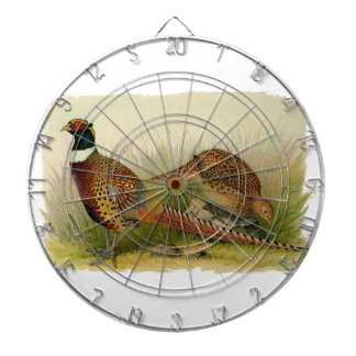 A pair of Ring necked pheasants in a grassy field Dartboards