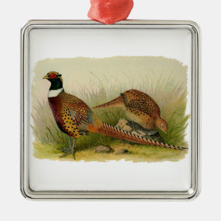 A pair of Ring necked pheasants in a grassy field Metal Ornament