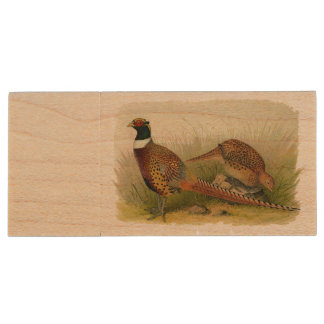 A pair of Ring necked pheasants in a grassy field Wood USB 2.0 Flash Drive