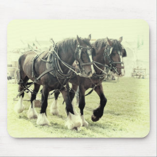 A PAIR OF SHIRES MOUSEMAT MOUSE PAD