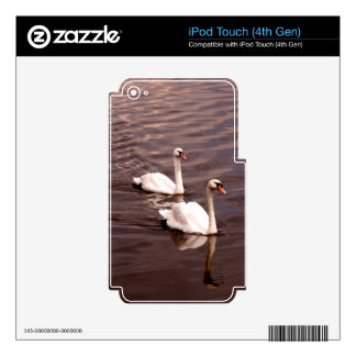 A pair of Swans on the lake Decals For iPod Touch 4G