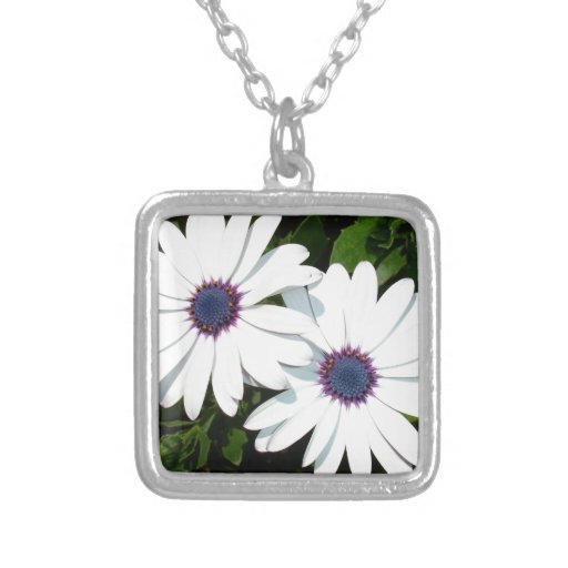 A Pair of White African Daisies Jewelry