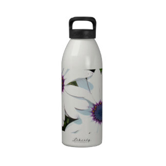 A Pair of White African Daisies Water Bottle