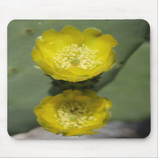 A Pair of Yellow Prickly Pear Flowers Mouse Pad