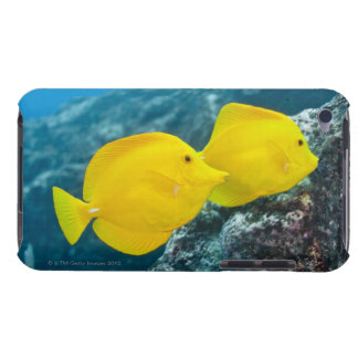 A Pair of Yellow Tangs iPod Touch Case-Mate Case