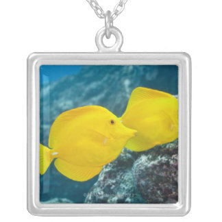 A Pair of Yellow Tangs Personalized Necklace