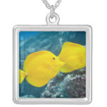 A Pair of Yellow Tangs Square Pendant Necklace